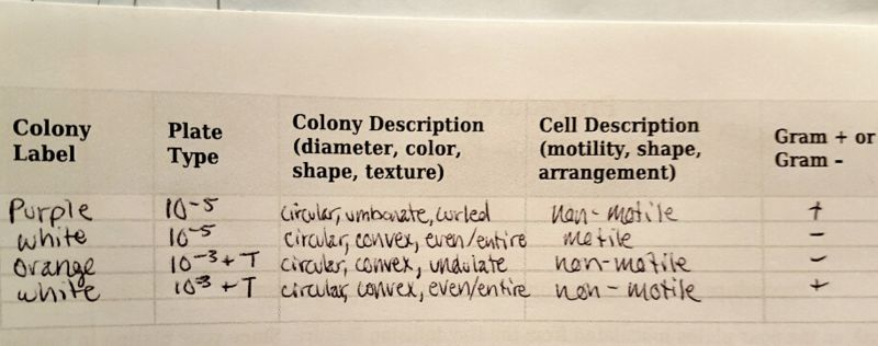 File:Colony Charact.jpg