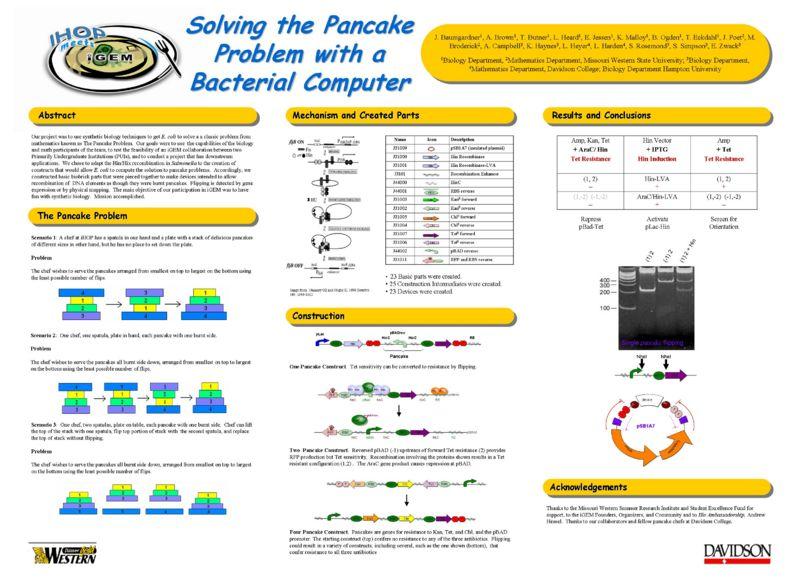 File:SolvingthePancakeProblemUsingaBacterialComputer.jpeg