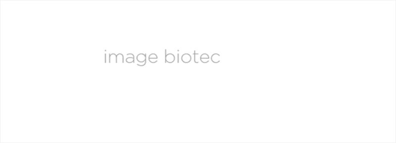 File:BM12 nanosaurs Slider2.png