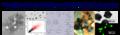 Thumbnail for version as of 06:02, 28 September 2011