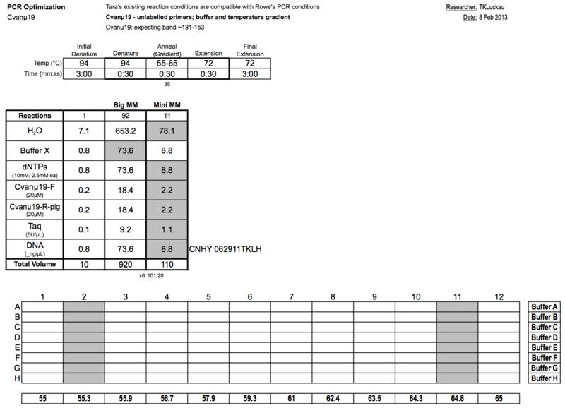20130208 PCRa.png