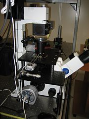 View of the microscope with tweezers assembled