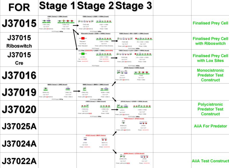 File:Ligation Chart.png