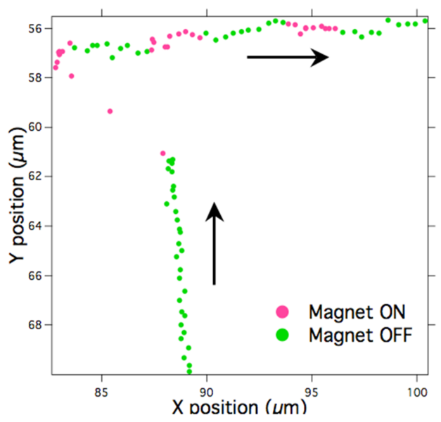 File:MagMT Fig 4a.png