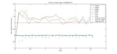 GFP promoter dGFPdt relative.jpg