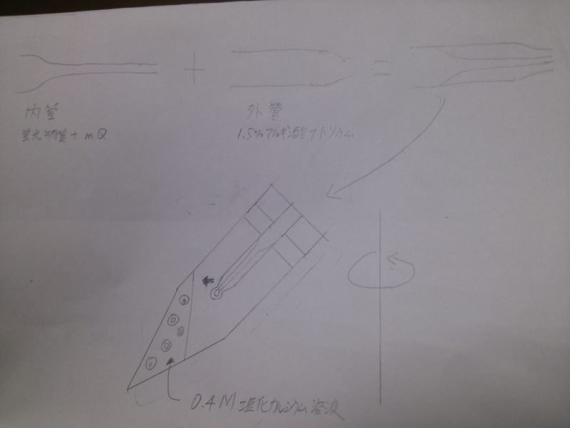 File:Image-仮.png