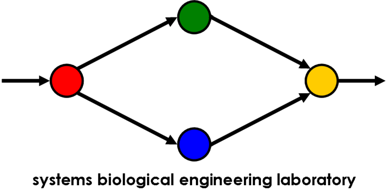File:SBEL logo (black on white).png