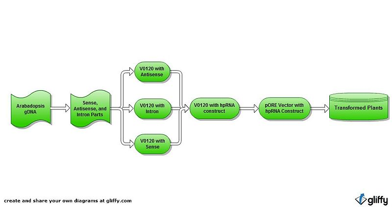 File:Simple flowchart.jpg