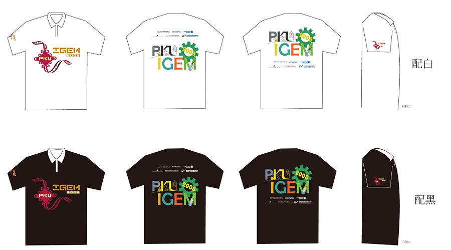 PKU iGEM08 Tshirt.JPG