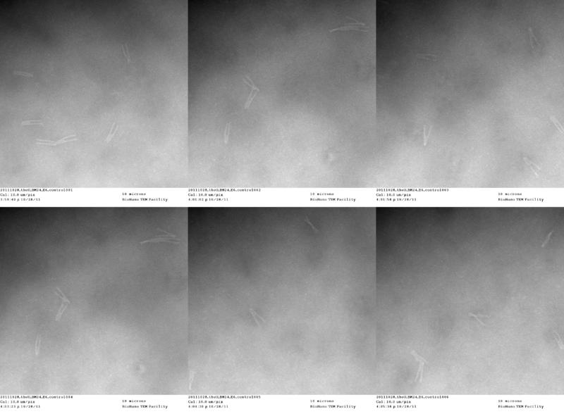 File:20111028 theU BM24 E6 control.png