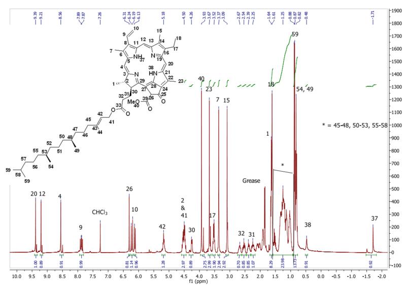 File:Biomod Aarhus Chem NMR 7H.png
