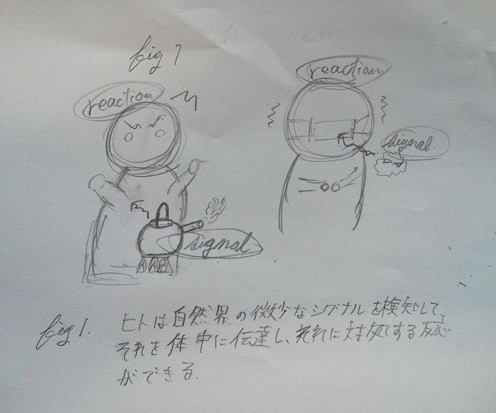 File:Sendai-pro-fig1-01.jpg