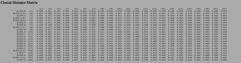 File:Distance matrix subject 13.jpg