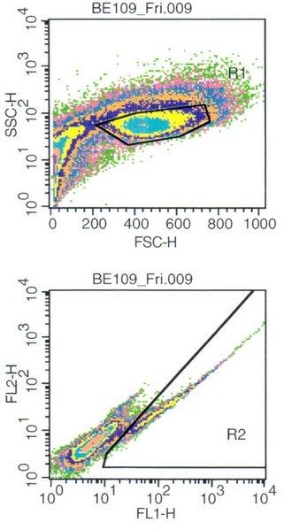 File:Flow cytometry.jpg
