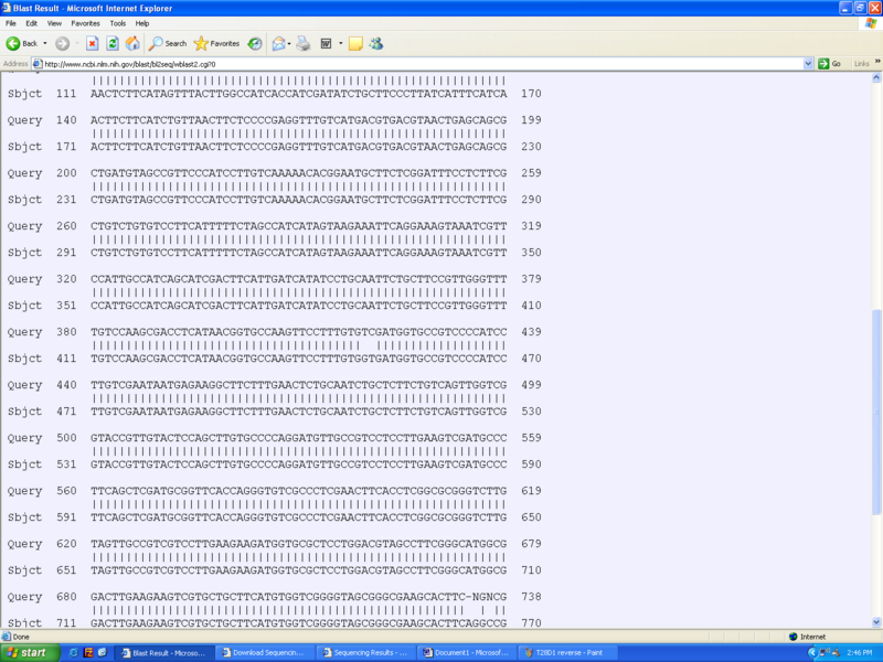 File:T28D2 reverse.bmp