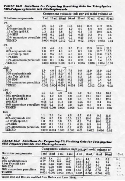 File:SDS PAGE gel formulations.png