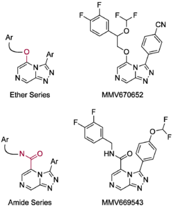 Examples of ether and amide target molecules.