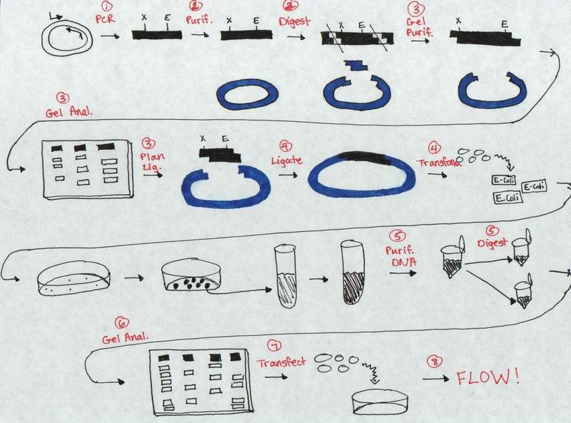 File:Mod 1 drawing.jpg