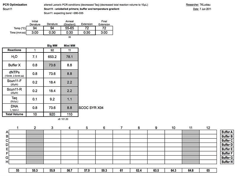 File:20110607 PCR.jpg