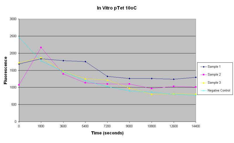 File:In vitro pTet 10oC.PNG
