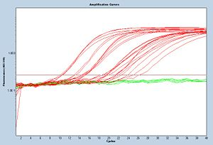 Example amplification curve. These data were collected by Sp14 20.109ers!