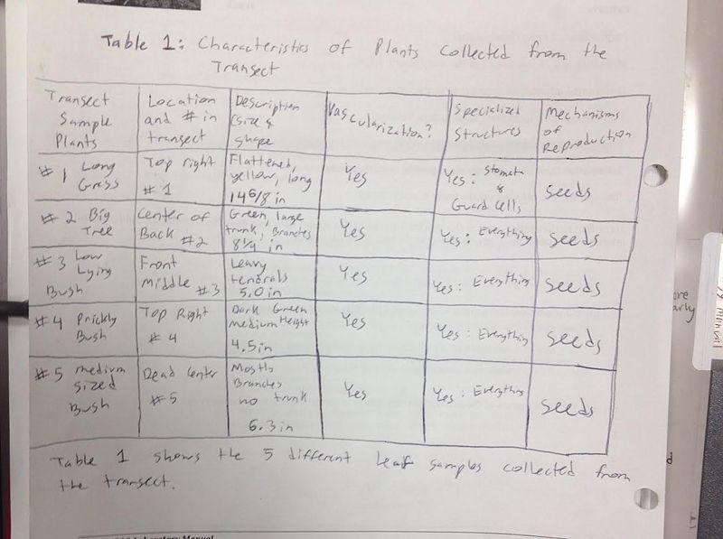 File:Table1pg52.jpg
