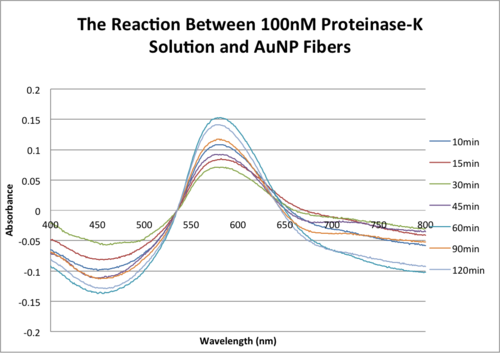 AMS The Reaction Between 100nM Proteinase-K Solution and AuNP Fibers .png