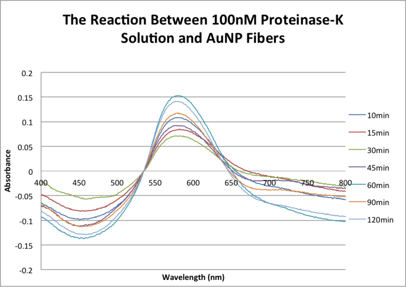 File:AMS The Reaction Between 100nM Proteinase-K Solution and AuNP Fibers .png