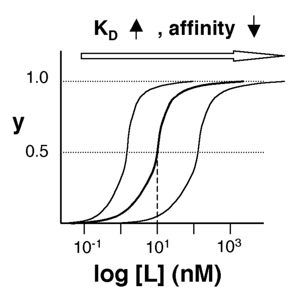 File:20.109 Affinity.png