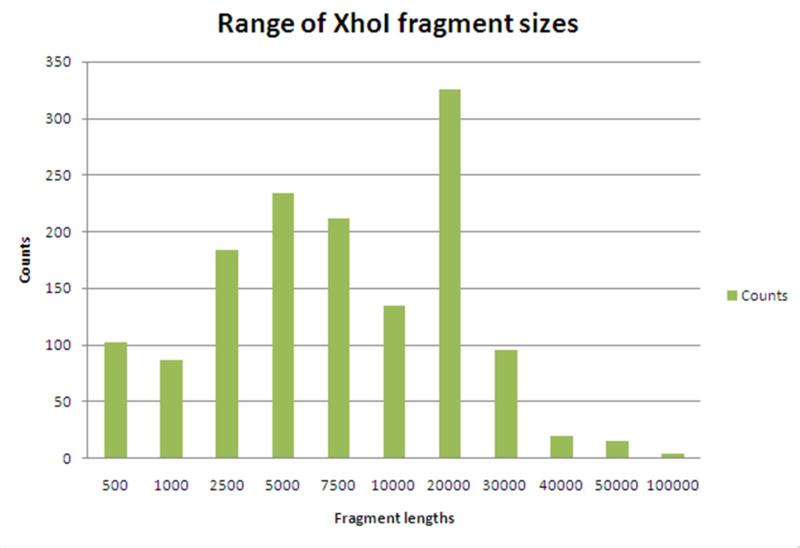 File:Xhoi fragment histogram.png