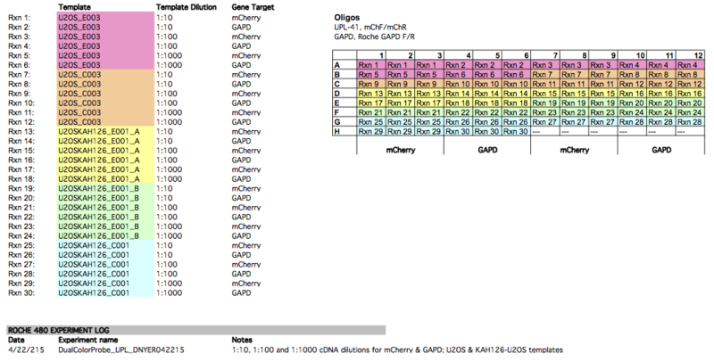 File:PCR Plate layouts Nyer Expt01.png