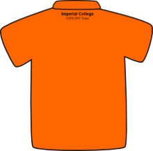 ICGEMS Orange Back.png