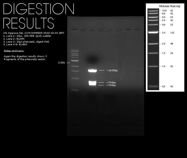 File:22112010-pSense66-Digests.jpg