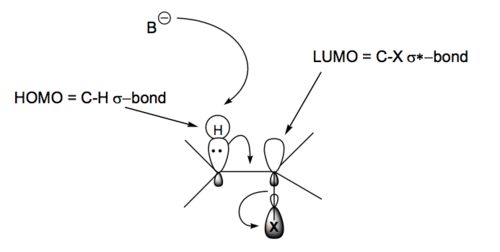 Scheme 7: The Antiperiplanar Geometry of the E2 Reaction Mechanism