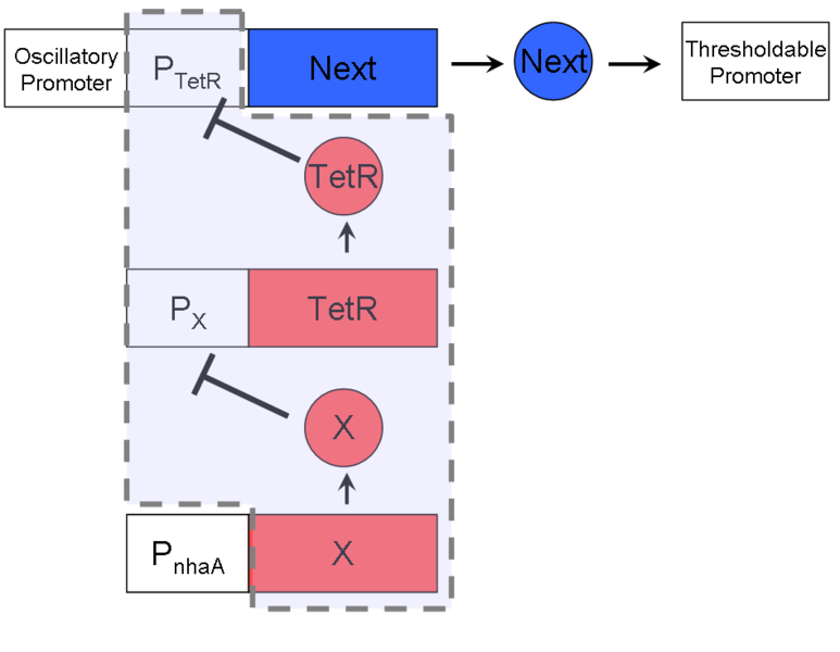 File:Oscillary timer.png