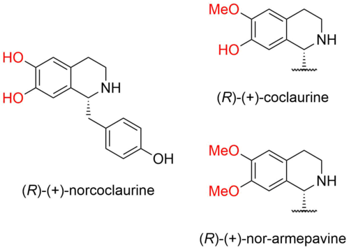 Scheme: (Hiemstra 2015). 1-benzyl-1,2,3,4-tetrahydroisoquinolines with different substitution patterns.