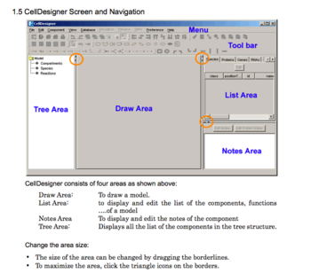 CellDesigner Main GUI