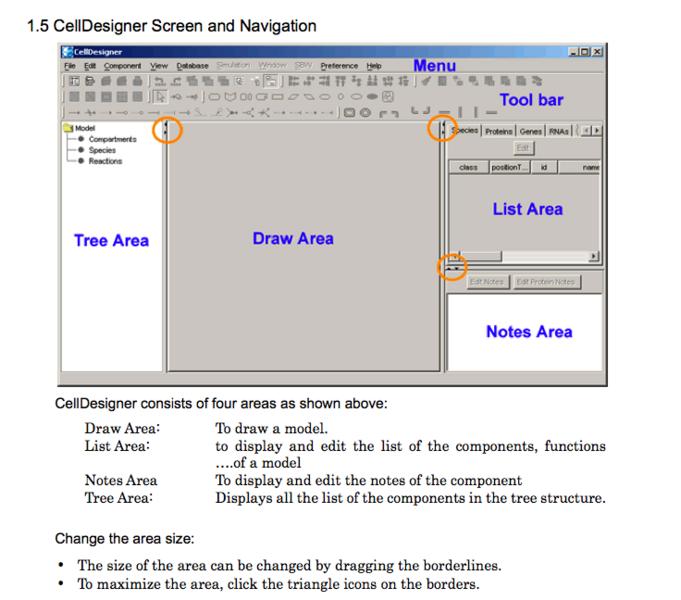 File:CellDesigner-ScreenAndNavigation.png