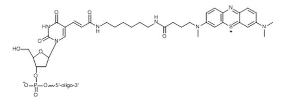 Figure 19a.