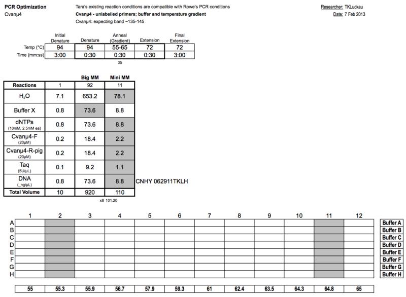 20130207 PCRa.png