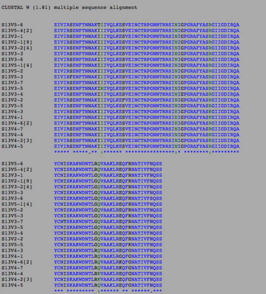 File:Sequence alignment for subject 13.png