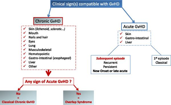 Diagnostic criteria for GVHD according to the NIH consensus [4]