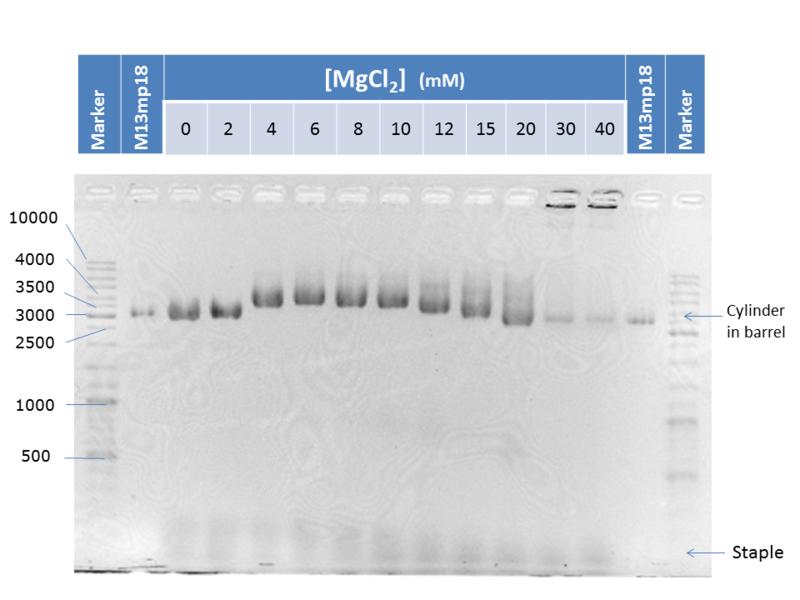 File:Result-SA1-MgCl2-Todai-new.png