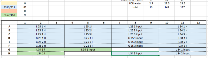 File:16.06.13 ChIP qPCR plate 9 screen shot.png