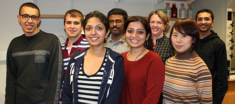 Topp Research Group - January 2013 (back row, l to r): Ehab Moussa, Dan Epling, Moorthy Balakrishnan, Dr. Topp, Jainik Panchal (front row, l to r): Lavanya Iyer, Saradha Chandrasekhar, Bo Xie