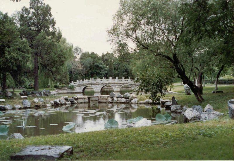 File:PKU Lotus lake.jpg