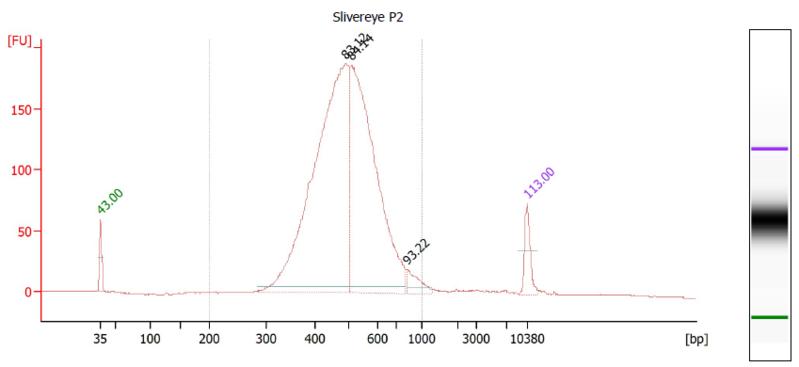 File:ZoLaP2 Bioanalyzer.PNG