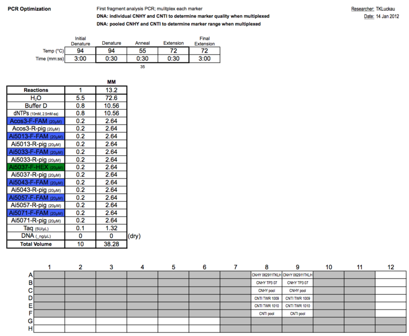 20120114 PCRb.png