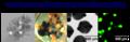 Thumbnail for version as of 17:30, 27 September 2011
