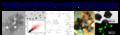 Thumbnail for version as of 06:00, 28 September 2011